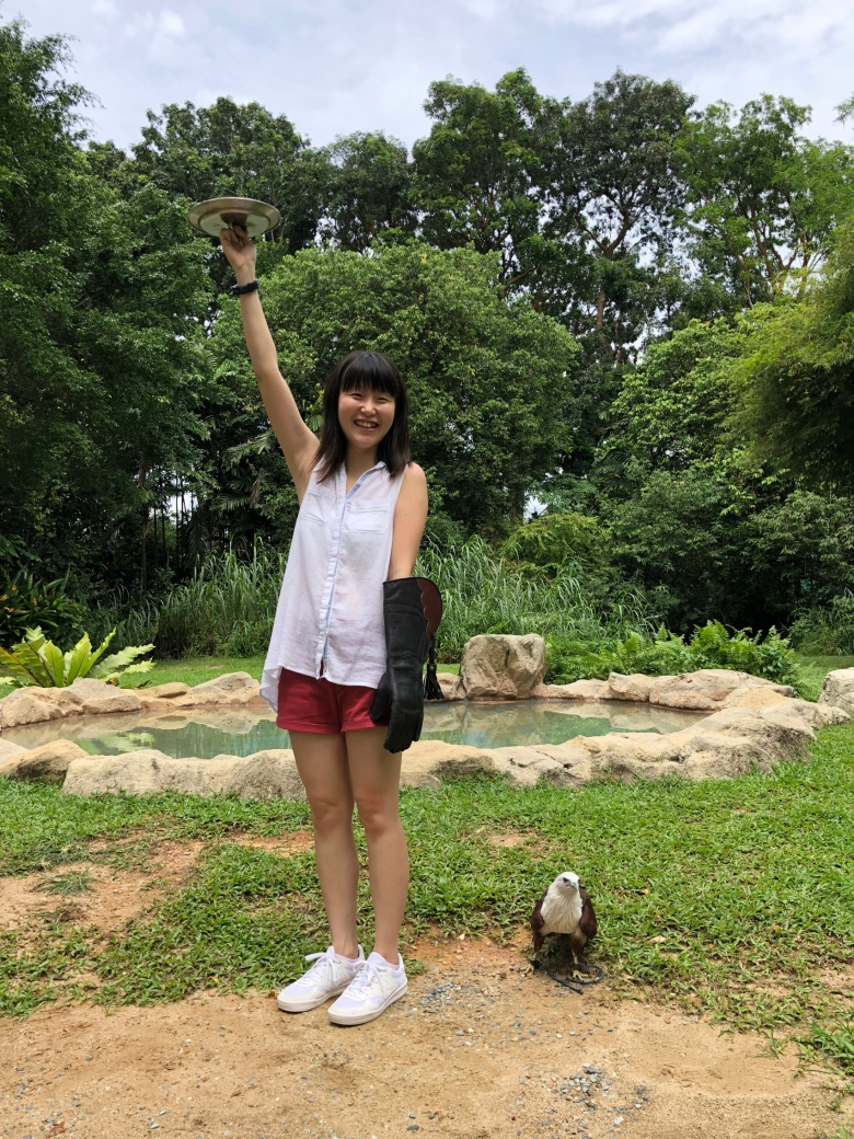 Bird's Eye Tour experience at Jurong Bird Park Singapore